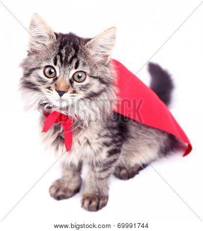 Cat in red cloak, isolated on white.