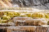 stock photo of mammoth  - Mammoth Terraces - JPG