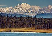picture of denali national park  - McKinley peak - JPG