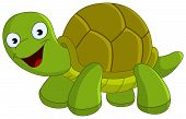picture of turtle shell  - Vector illlustration of a cute happy green turtle - JPG