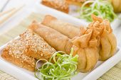 picture of wanton  - Asian Starters  - JPG