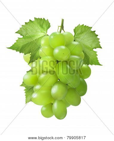 Green Grapes Vertical With Leaves Isolated On White Background