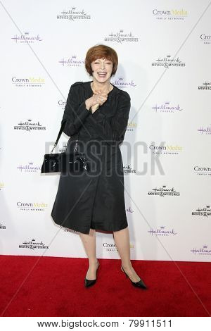 LOS ANGELES - JAN 8:  Frances Fisher at the Hallmark TCA Party at a Tournament House on January 8, 2014 in Pasadena, CA