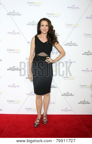 LOS ANGELES - JAN 8:  Andie MacDowell at the Hallmark TCA Party at a Tournament House on January 8, 2014 in Pasadena, CA