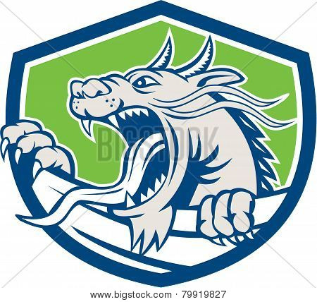 Chinese Dragon Head Growling Shield Retro