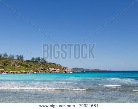 Beach Coconut Beach