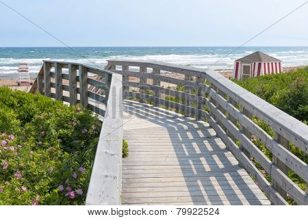 Wooden boardwalk leading to Atlantic beach with lifeguard hut and wild rose flowers in Prince Edward Island, Canada