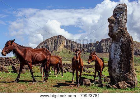 Horse near statues  on the Isla de Pascua. Rapa Nui. Easter Island