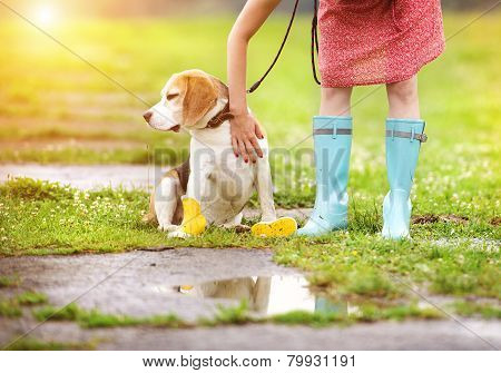 Young woman in wellies walk her dog