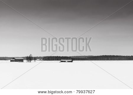 Fields Covered With Snow