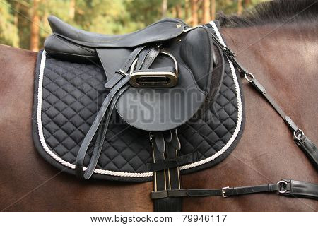 Black Saddle On Black Horse