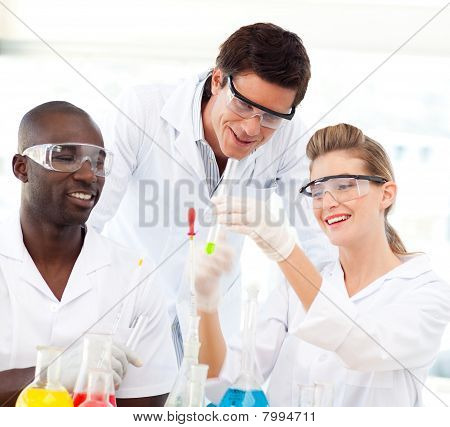 Portrait Of A Scientists Examining Test-tubes