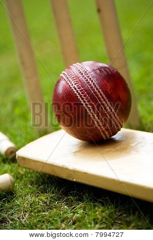 Cricket Ball Bat & Stumps