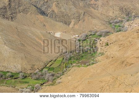 The Agriculture Along The Valley On Atlas In Morocco