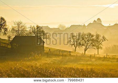 Countryside Landscape Golden Morning Fog