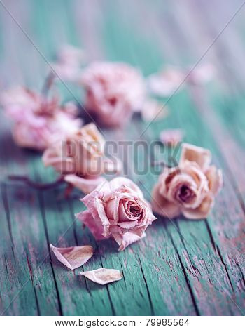 Dry Roses On Wooden Background