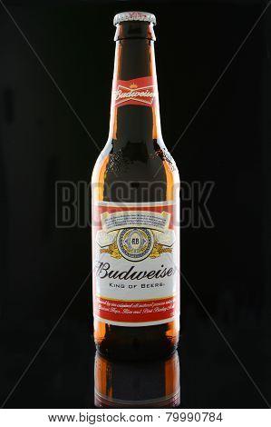 Budweiser Bottle On Black