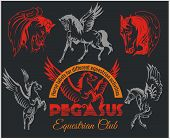 stock photo of pegasus  - Vector set of pegasus and horses labels for different equestrian activities - JPG
