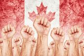 foto of labor  - Canada Labor movement workers union strike concept with male fists raised in the air fighting for their rights Canadian national flag in out of focus background - JPG