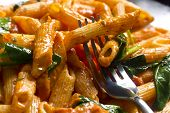 foto of sauteed  - Penne pasta in creamy vodka tomato sauce with sauteed baby spinach leaves  - JPG