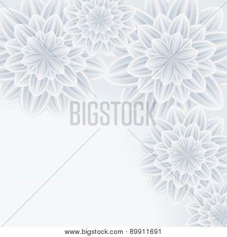 Elegant Background With Flower Chrysanthemum