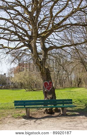 Tree In The Park With Valentine Heart, Bench