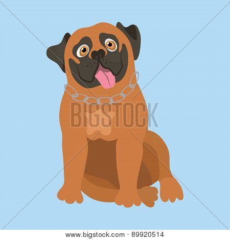 South African Boerboel. Vector illustration