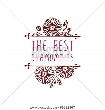 Handsketched typographic element with chamomiles