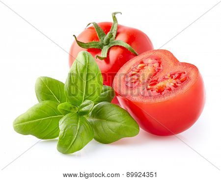 Basil with tomato