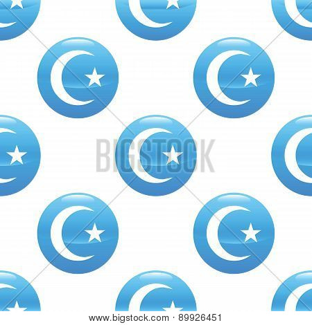 Crescent with star sign pattern