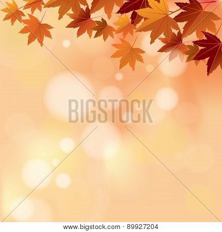 Autumn Pastel Color Bokeh Background