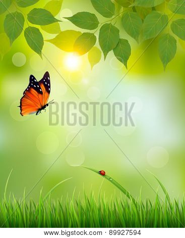 Nature summer background with leaves and grass. Vector.