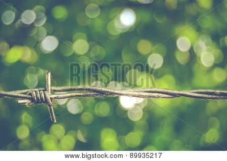 Barbed Wire Bokeh