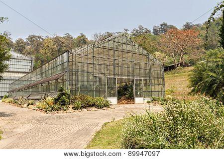Greenhouse In The Botanic Garden