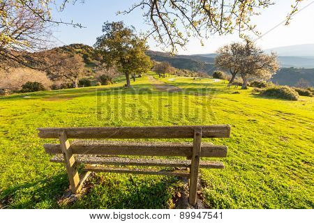 Bench in garden at sunrice in spring season