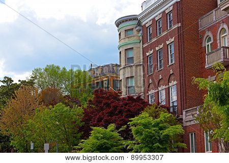 Shades of green color and townhouses in Washington DC during spring. Colors of spring in US capital