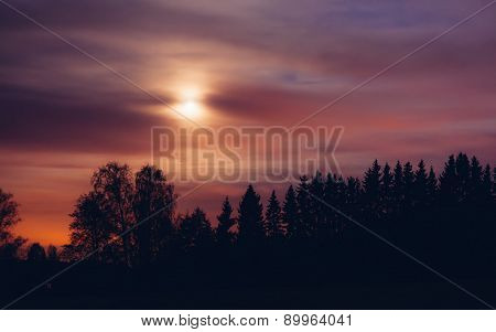 Night landscape and cloudy starry sky