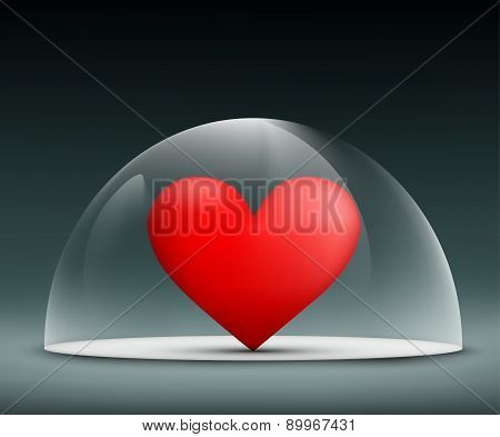 Human Heart Under A Glass Dome