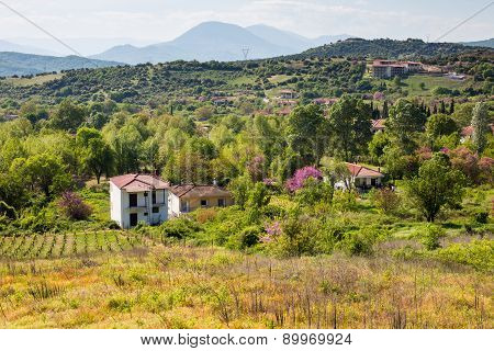 Rural Landscape In Greece With Farm And Vineyards