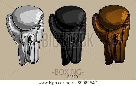Sport. Boxing