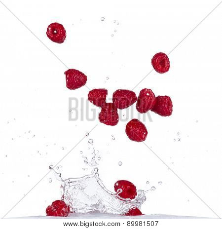 Fresh raspberries in water splash isolated on white background