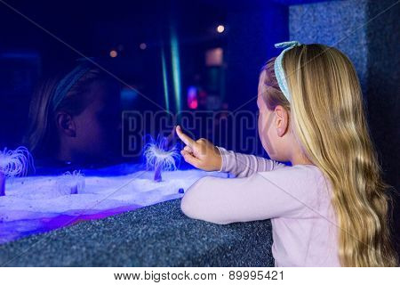 Young woman pointing a sea anemone in tank at the aquarium
