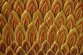 foto of spears  - abstract stucco art of peacock feather in spear shape - JPG