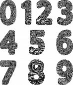 picture of fingerprint  - silhouette of numbers with fingerprint  - JPG
