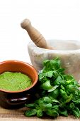 picture of pestle  - pesto sauce with fresh basil - JPG