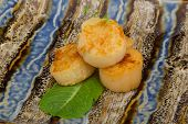 stock photo of scallops  - Grilled scallops in the bowl with herbs - JPG