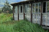 stock photo of marshes  - A wood building built in reeds on a marsh in San Pablo - JPG