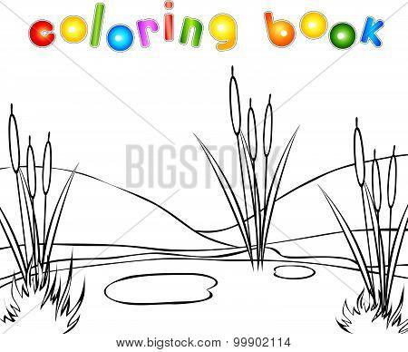 Swamp Coloring Book