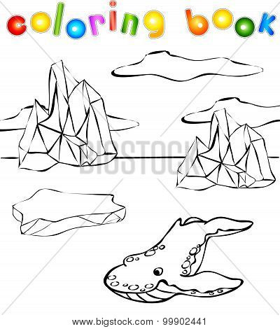 Whale Killer Coloring Book