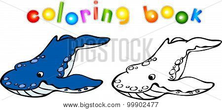 Funny Cartoon Whale Killer Coloring Book